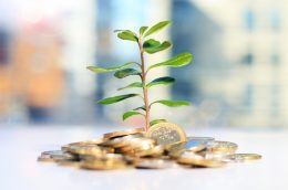 Investment for growth - stock image courtesy of APS.